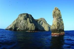 Malpelo Island