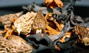 Truffles and mushrooms in Bogotá