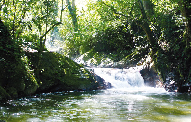 Waterfalls along a trail near Minca, Colombia.