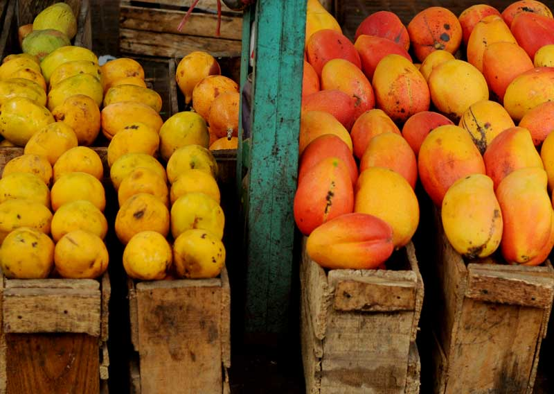 mangoes and oranges in Paloquemado market.