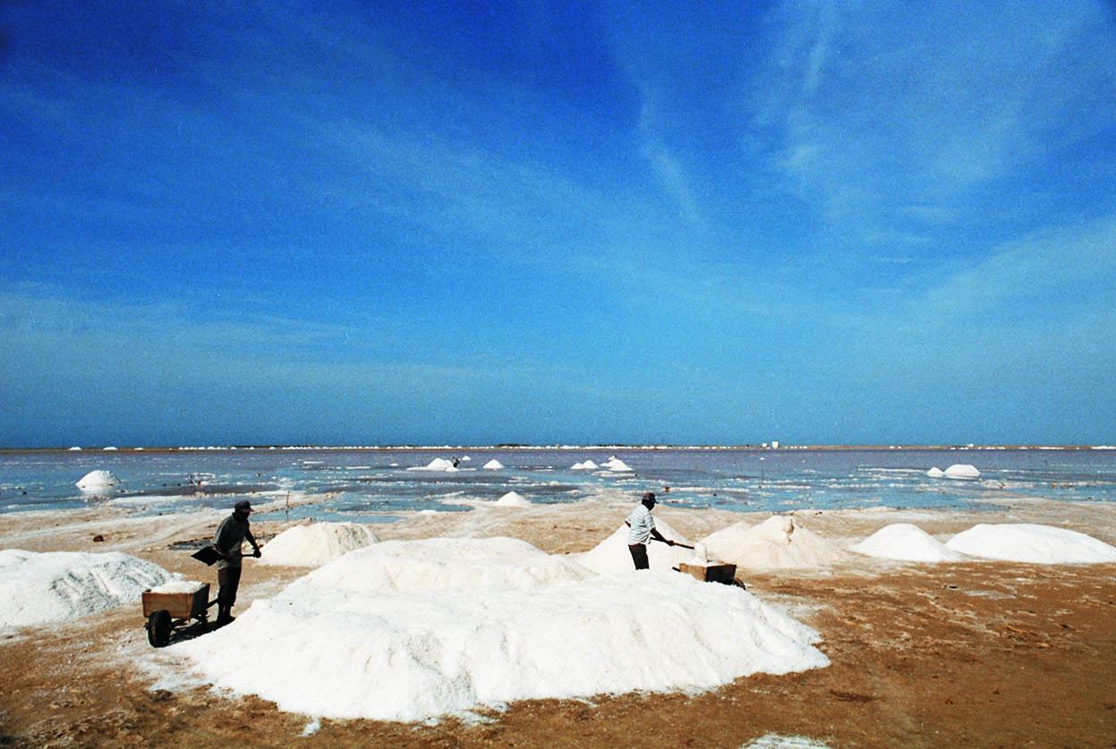 Manaure salt fields