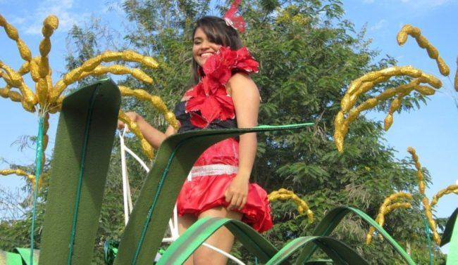 Festival del Arroz