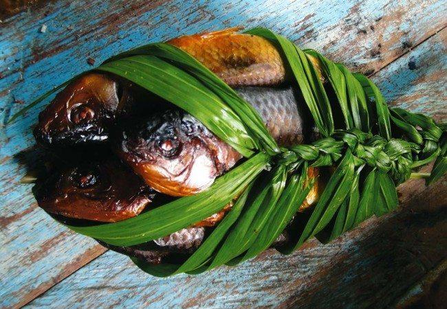 Mitú fish