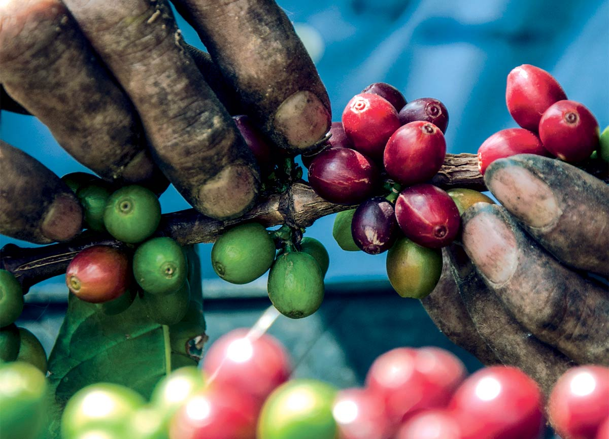 Colombian coffee culture is more about the experience than the drink.