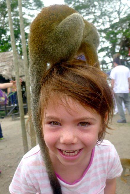 Monkeys aren't shy in Colombia's Amazon region.