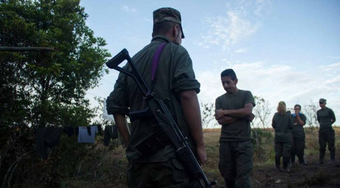FARC rebels photographed in the Colombian countryside. (Photo by Carlos Bernate)