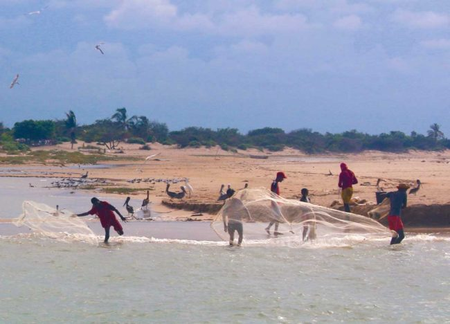 Fishermen cast nets in the flamingo reserve in Colombia's northern La Guajira department. (Photo by Jacqui de Klerk)
